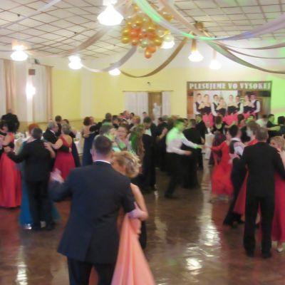 Reprezentačný ples 2017  Obrázok 18